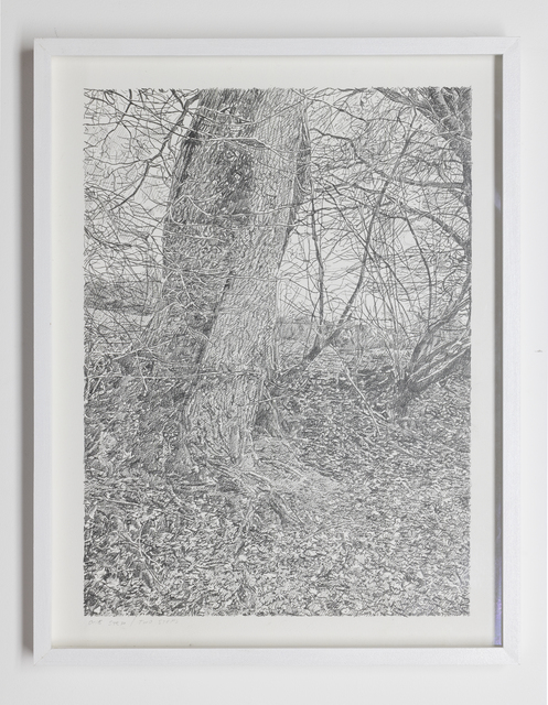 Stijn Cole, 'One step / two steps: series of 3 drawings', 2013, Whitehouse Gallery