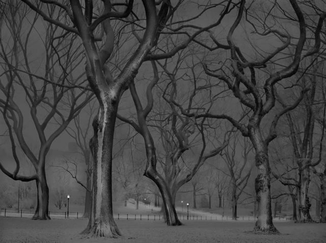 , 'The Mall, Central Park, New York City,' 2013, ClampArt