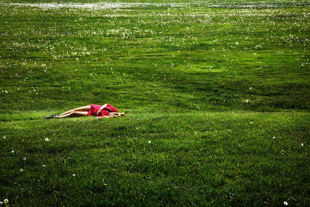 David Drebin, 'Field of Dreams', 2012, Contessa Gallery