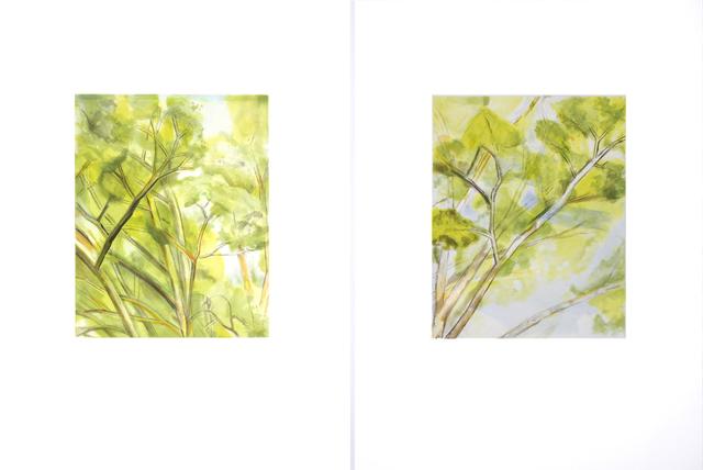 , 'Pin Oak Detail (A & B),' 2003, Senior & Shopmaker Gallery