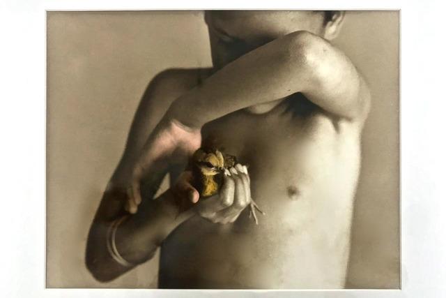 , 'Jamás se vio caer,' 2003, Patricia Conde Galería