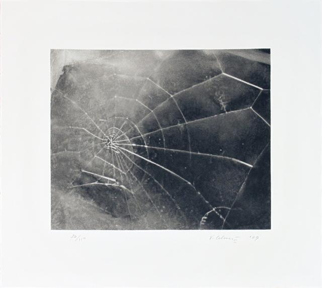 Vija Celmins, 'Spider Web', 2009, ArtWise