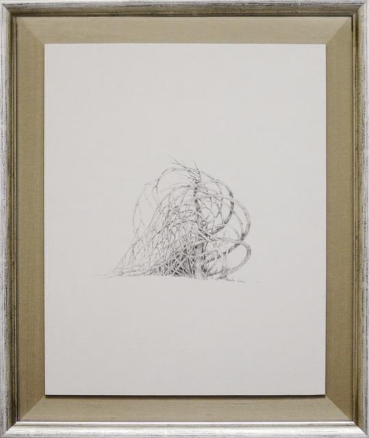 , 'Round trees 1,' 2012, Kamiya Art
