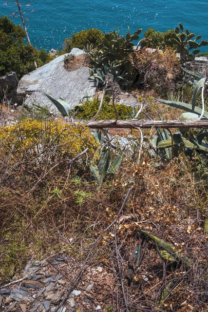 , 'Cinque Terre,' 2014, Gallery AM MEER