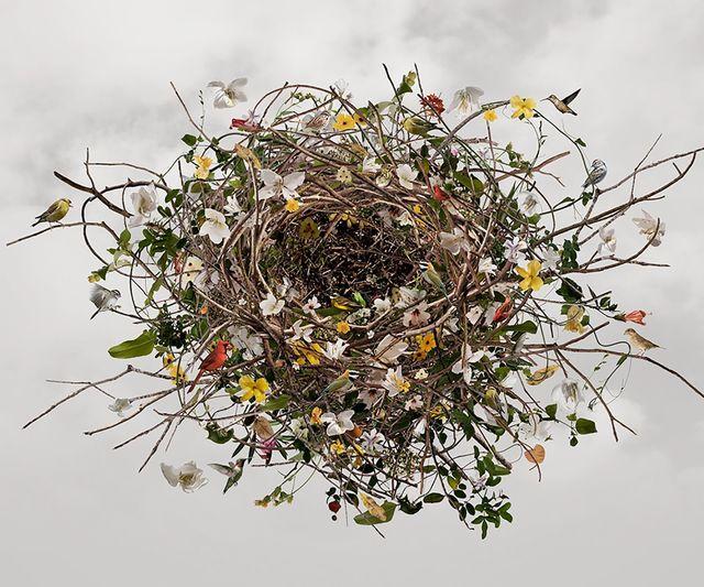 Ysabel Lemay, 'Nurturing Life ', 2010 , The Directed Art Modern