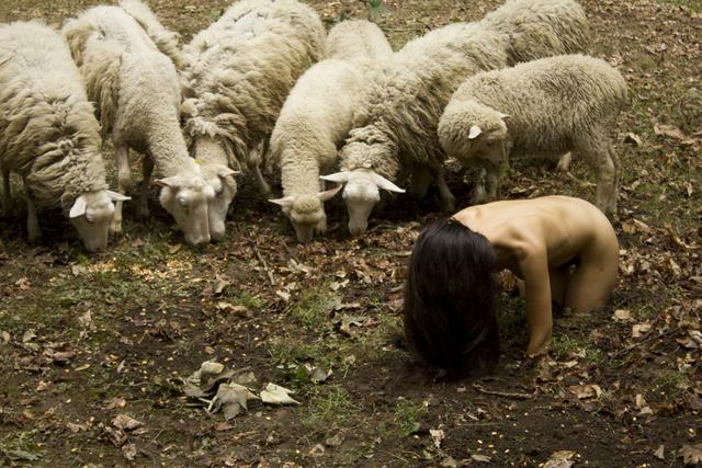 , 'La oveja negra,' 2014, Prometeogallery
