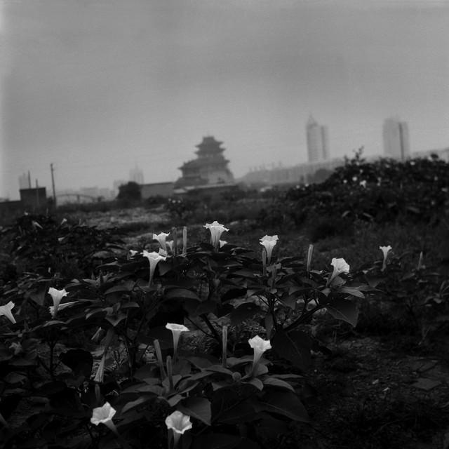 Tian Ye, 'Kaifeng', 2000, Pan-View Gallery