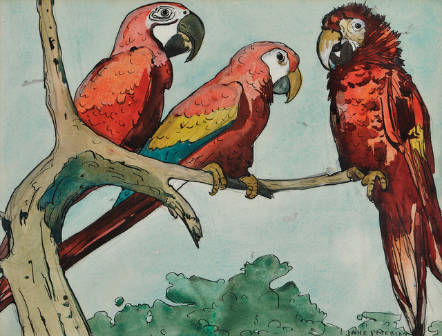 Jane Peterson, 'Three Parrots', Skinner
