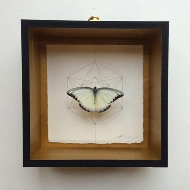 , 'Geometry of the Butterfly – Silver Grey,' 2015, Lawrence Alkin Gallery