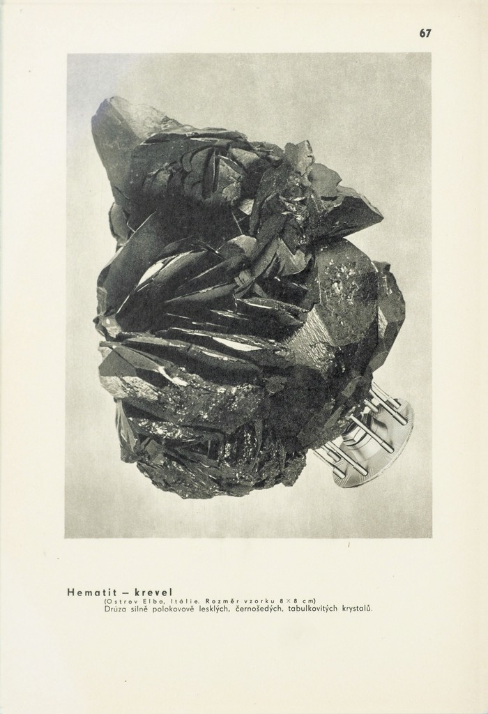 https://www artsy net/artwork/theophile-alexandre-steinlen-nu