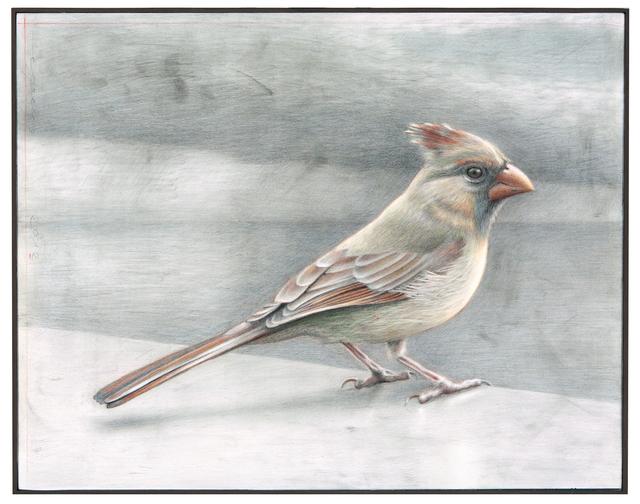 , 'Colored Cardinal,' 2012, Dowling Walsh