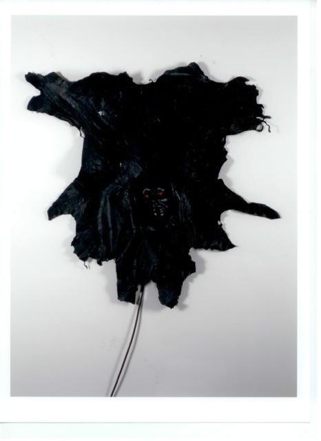 , 'Autoritratto,' 1972, Bernier/Eliades