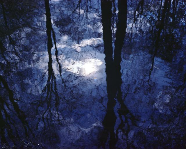 , 'Untitled,' 2015, Southard Reid