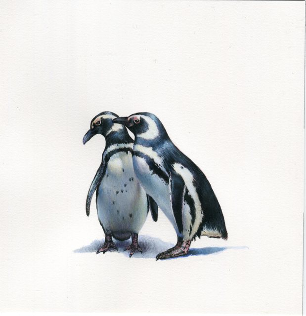 Dina Brodsky, 'Two Penguins', 2019, Drawing, Collage or other Work on Paper, Watercolor and gouache on paper, Garvey | Simon