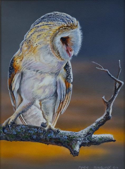 , 'Amber Glow,' , Trailside Galleries