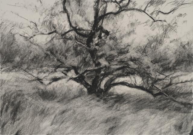 , 'Orchard #5,' , Dowling Walsh