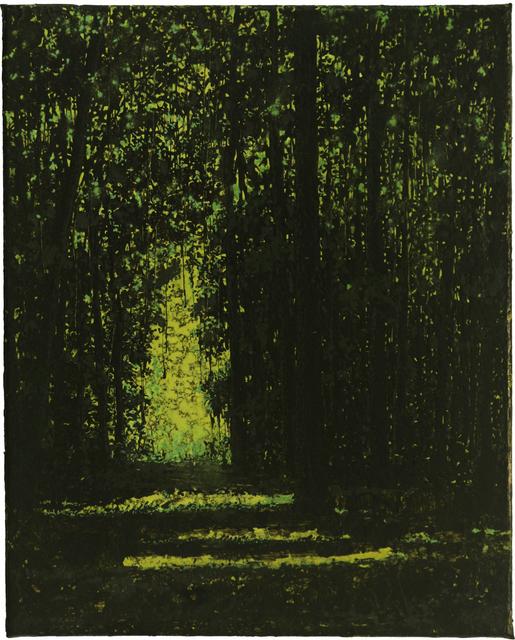 Wulf Winckelmann, 'Lichtung (#1155) ', 2015, Galerie Barbara von Stechow