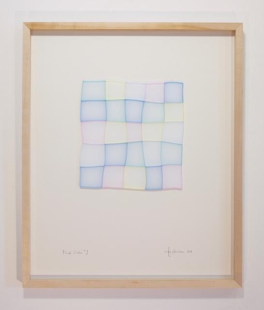 """, '""""Fluid Order *1"""",' 2017, Galerie Dutko"""