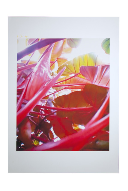 Pipilotti Rist, 'Small Homo Plants Herself', 2007, Print, Video still, ink print on rag paper, The Armory Show Print Archive