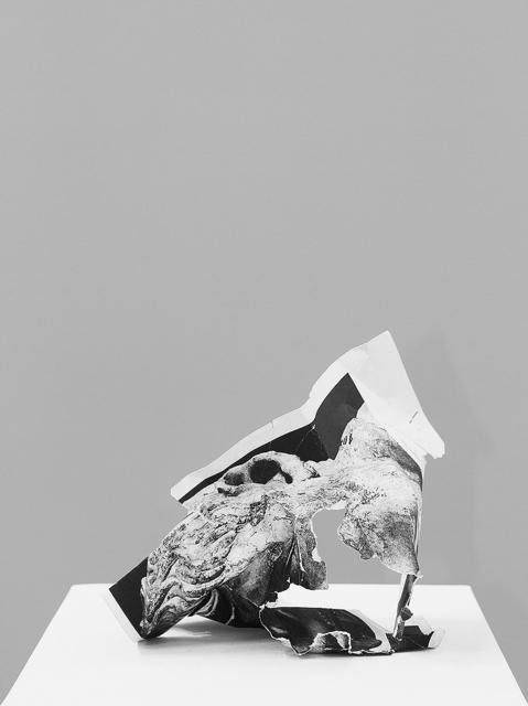 , 'Damnatio memoriae #1,' 2013, Casemore Kirkeby