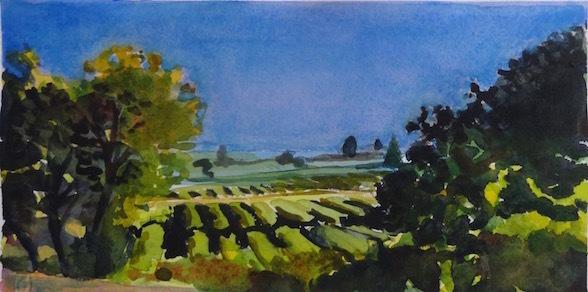 , 'Vineyard Near Sebastopol, California,' 2010, The Galleries at Salmagundi