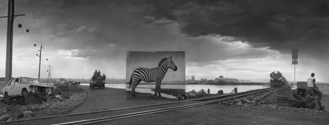 Nick Brandt, 'Road to Factory with Zebra', 2014, Fahey/Klein Gallery