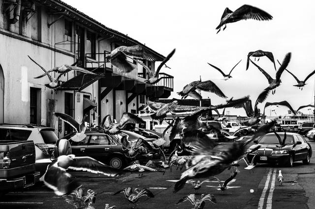 , 'Attack,' 2013, ARTSPACE 8