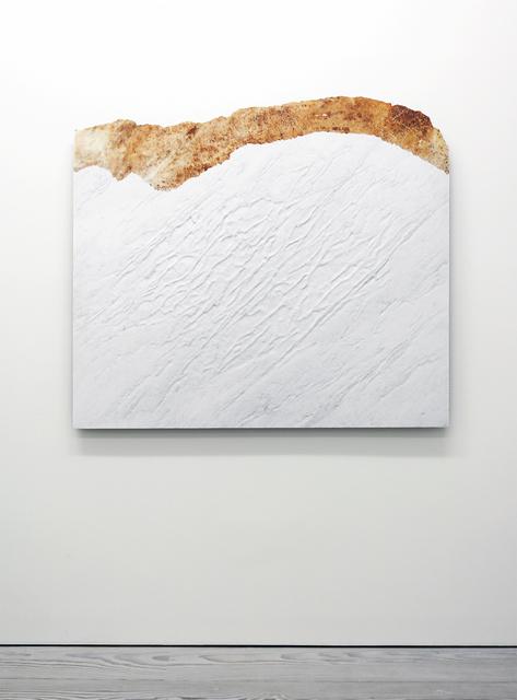 , 'Pelle del monte,' 2012, Marian Goodman Gallery