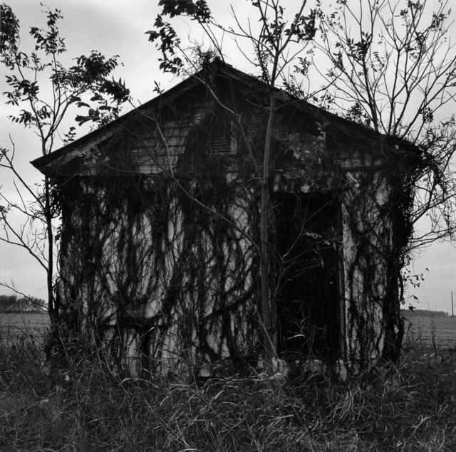 Graciela Iturbide, 'Carretera 61, de Clarksdale, Mississippi a Memphis, Tennessee (Highway 61, from Clarksdale, Mississippi to Memphis, Tennessee)', 1997, Etherton Gallery
