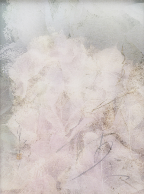 Chaco Terada, 'Memory Bouquet 2', 2019, Mixed Media, Archival pigment print on layers of silk organza with sumi ink and mineral pigments, Valley House Gallery & Sculpture Garden