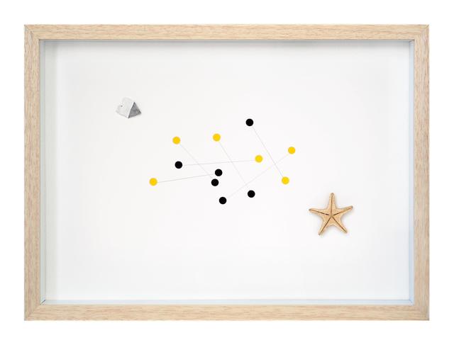 , 'Starfish Nº 2,' 2016, Lucia Mendoza