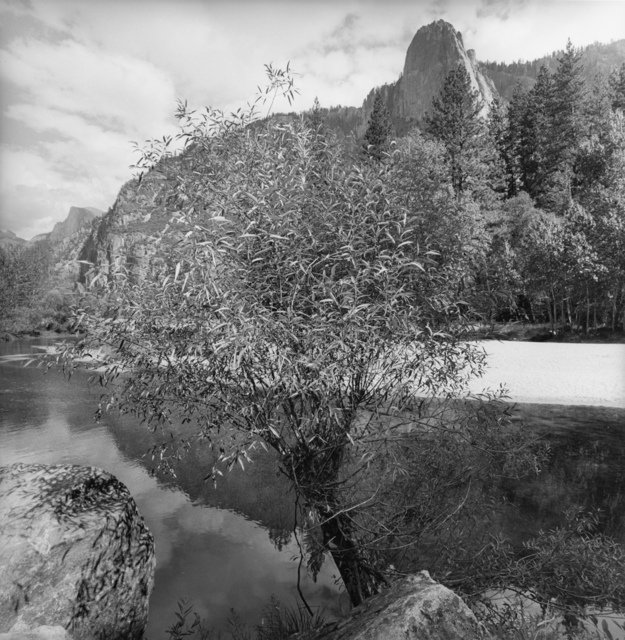 , 'Yosemite National Park, California,' 1996, Fraenkel Gallery