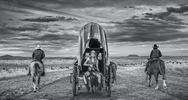 David Yarrow, 'Amarillo by Morning ', 2020 , Photography, Archival Pigment Print, Samuel Lynne Galleries