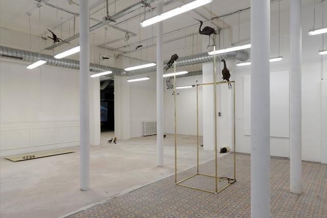 , 'July 14th? (Installation view),' 2013, Fondation d'Entreprise Galeries Lafayette