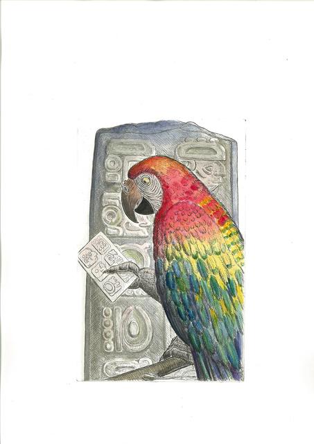 , 'Scarlet Macaw, Honduras,' 2016, Cavalier Galleries