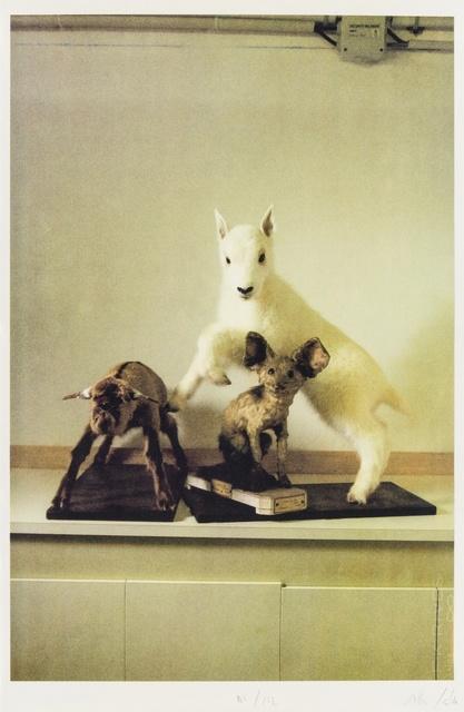 Allora & Calzadilla, 'Untitled (Natura Morta)', 2012, Forum Auctions