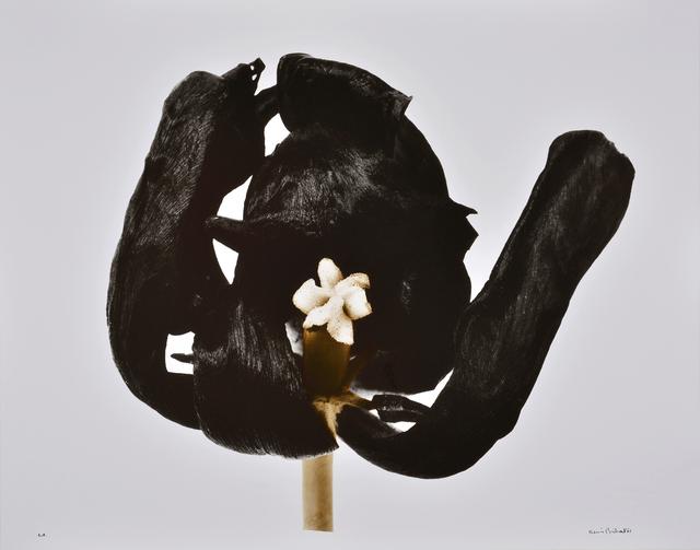 , 'Tulipe Noire,' 1977 printed 2001, Nailya Alexander Gallery