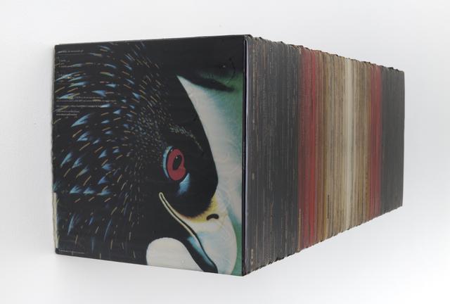 David Ellis, 'Bird Pyramid', 2016, Joshua Liner Gallery