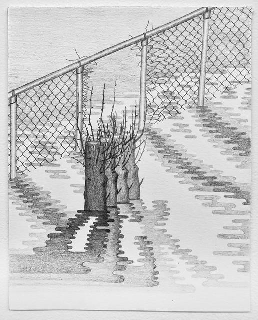 Jen Hitchings, 'Stump', 2019, PROTO Gallery