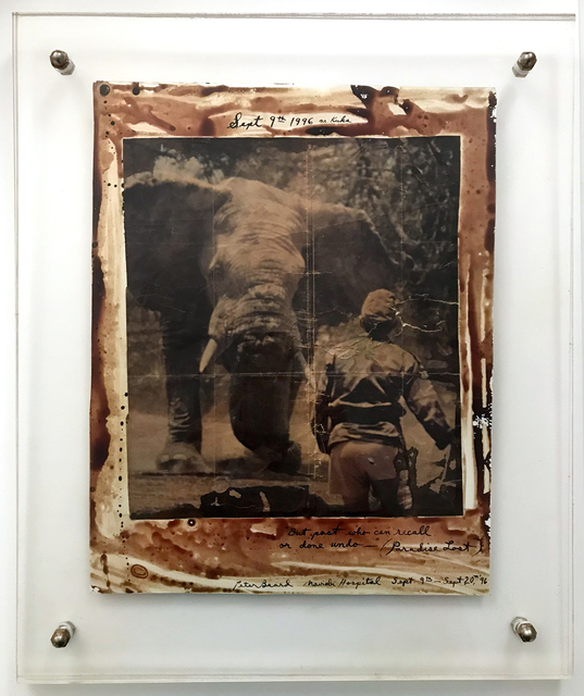 "Peter Beard, '""But Past Who Can Recall Or Done Undo"" Paradise Lost', 1996, The Untitled Space"