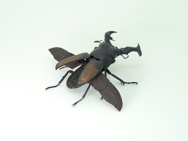 , 'Fighting Giant Stag Beetle,' 2018, SEIZAN Gallery
