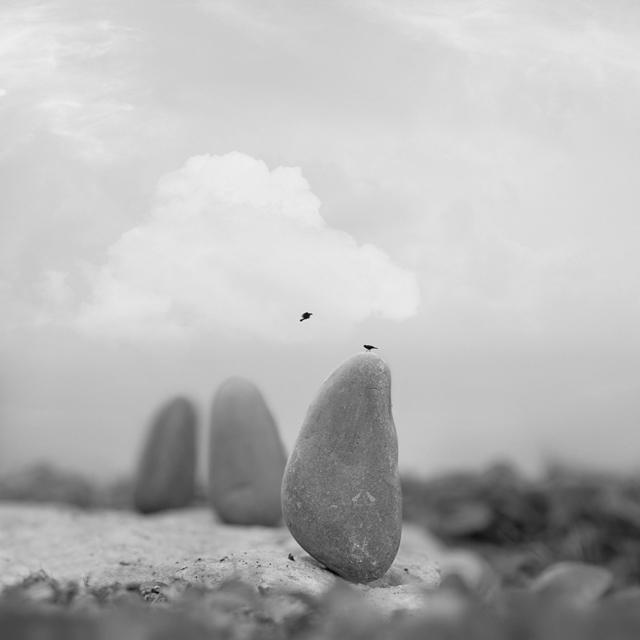 , 'Serendipity,' 2014, Jen Mauldin Gallery