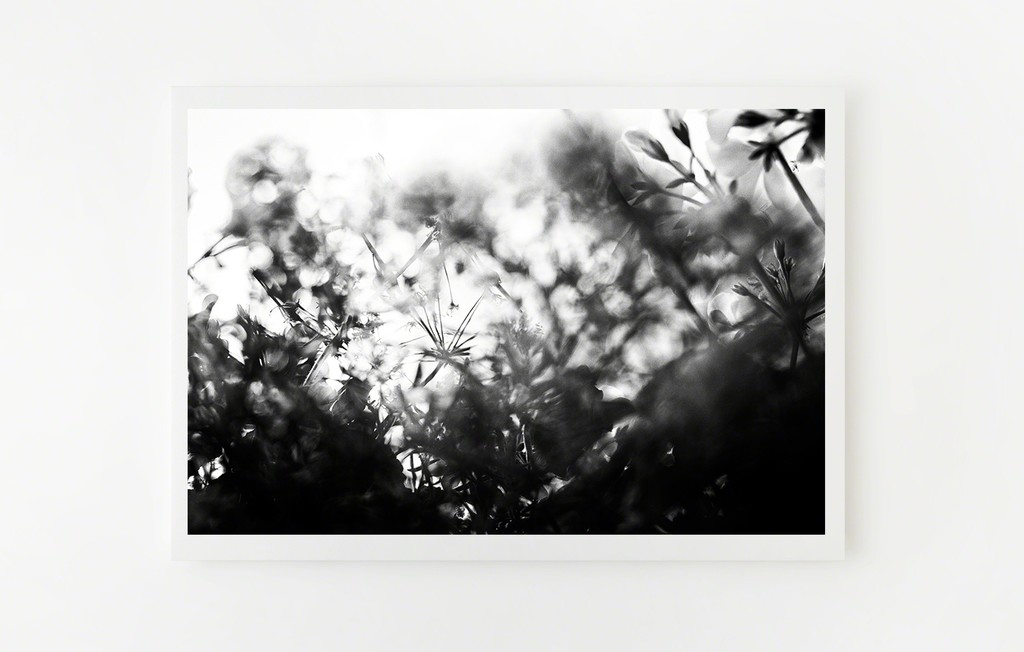 Pursuit of Happiness 004, Martina + Reem, available at theprintatelier.com