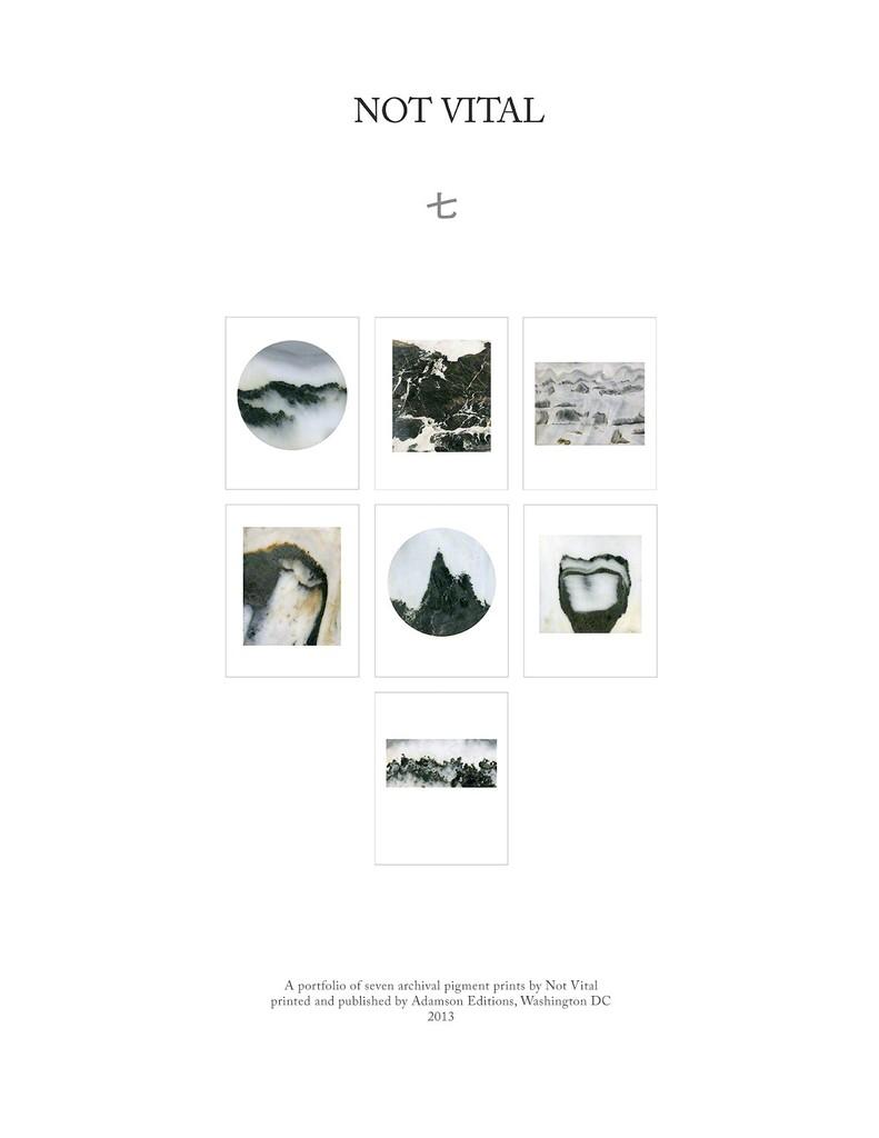 Not Vital, 'Frontis,' 2013, Adamson Gallery