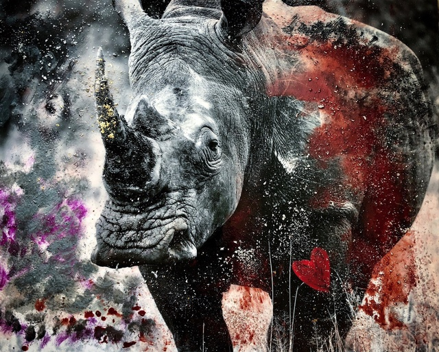 , 'Rhino Heart,' 2018, Isabella Garrucho Fine Art