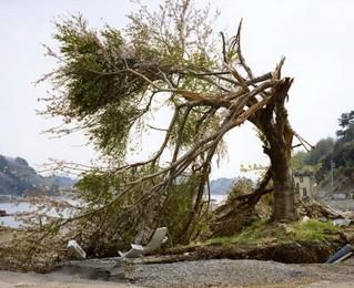 2011.5.1, Akasaki-cho