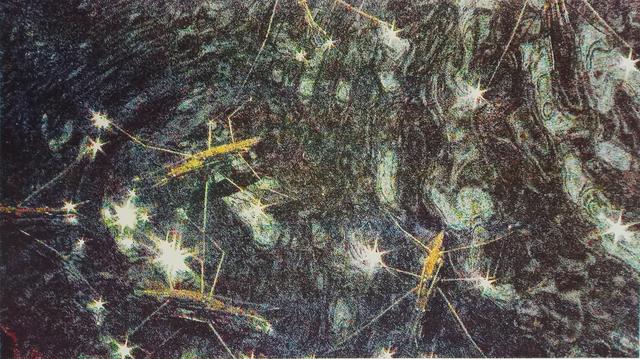 Anne-Charlotte Finel, 'Gerridae', 2020, Print, Four-colour screen printing, Jousse Entreprise