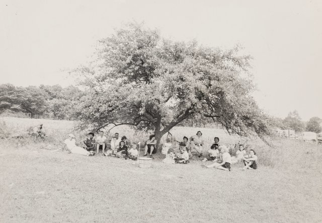 Robert Frank, 'Untitled (Group Under a Tree)', early 1950s, Heritage Auctions