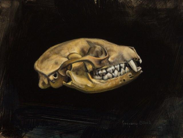 , 'Fox Skull,' 2016, Gallery 1261