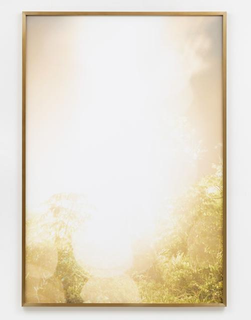 Julius von Bismarck, 'Talking to Thunder (Bright Tree)', 2017, Photography, Fine Art Print on Photo Rag Baryta, Sies + Höke